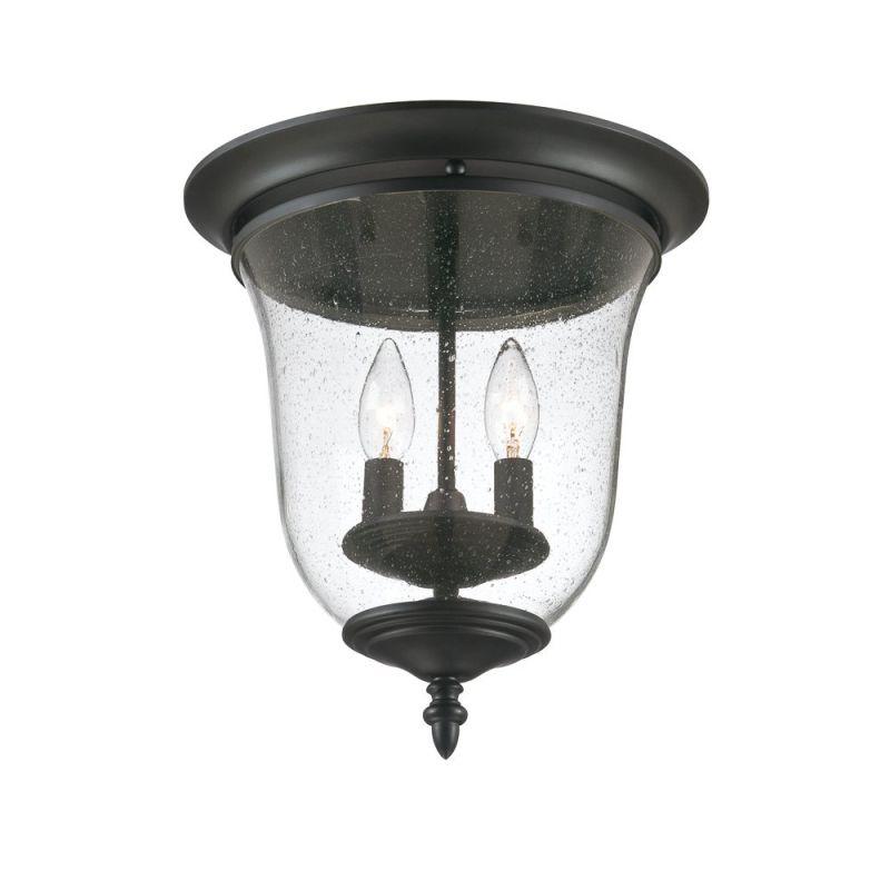 Acclaim Lighting 9305 Acclaim Lighting 9305 2 Light Ceiling Fixture