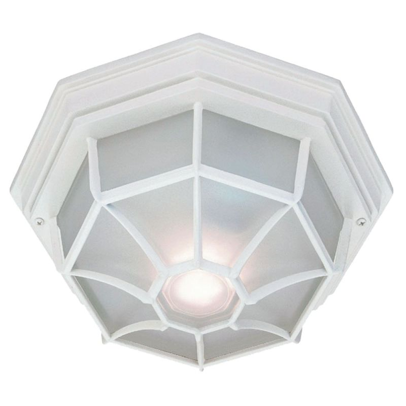 "Acclaim Lighting 2002 2 Light 11"" Width Outdoor Flushmount Ceiling"
