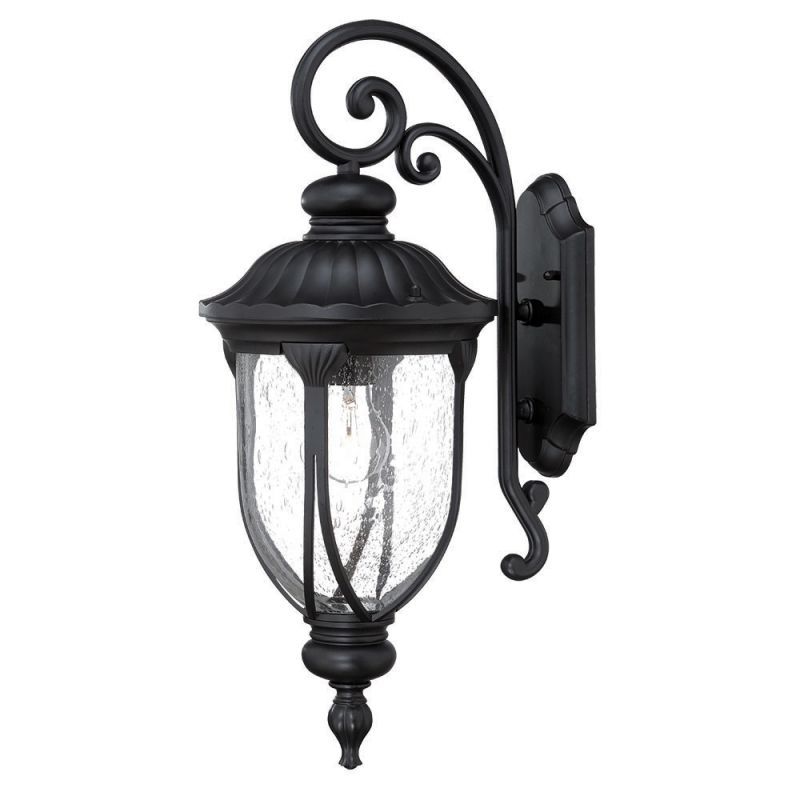 Acclaim Lighting 2212 Laurens 1 Light Outdoor Lantern Wall Sconce with