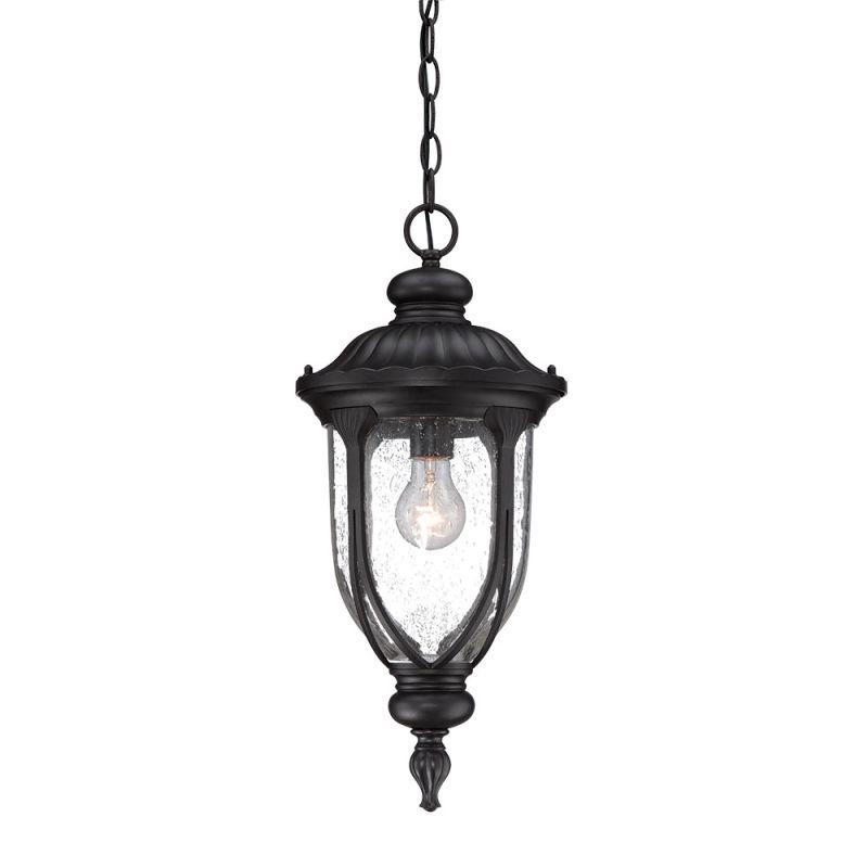 Acclaim Lighting 2216 Laurens 1 Light Outdoor Lantern Pendant with