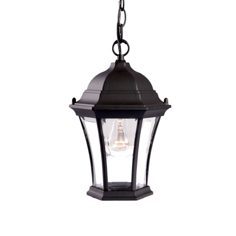 "Acclaim Lighting 5021 Bryn Mawr 1 Light 12"" Height Outdoor Pendant"