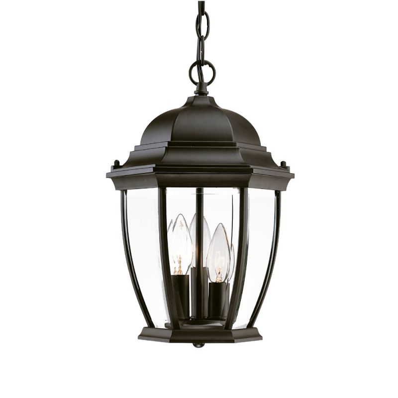 "Acclaim Lighting 5036 Wexford 3 Light 14.5"" Height Outdoor Pendant"