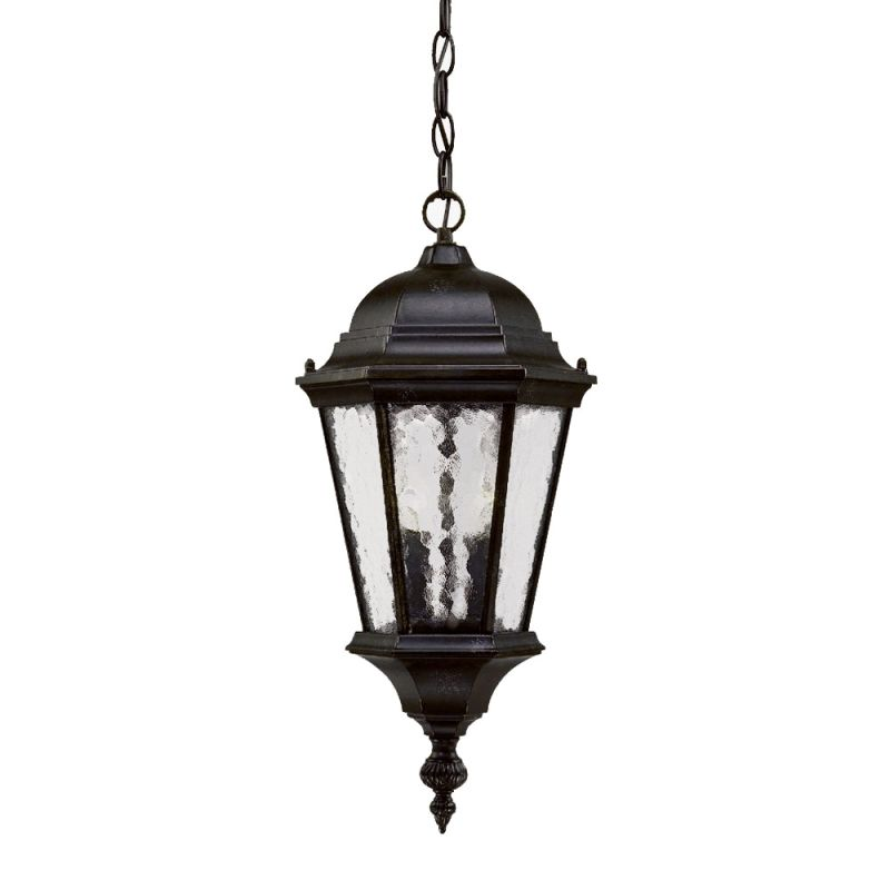 "Acclaim Lighting 5516 Telfair 2 Light 20"" Height Outdoor Pendant"