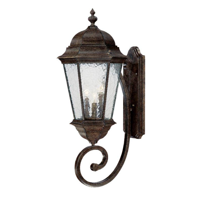 Acclaim Lighting 5521BC Black Coral Telfair 3 Light 30.75