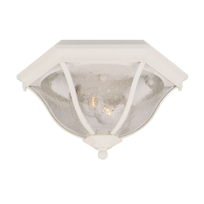 Acclaim Lighting 5615 Flushmounts 2 Light Outdoor Ceiling Fixture with