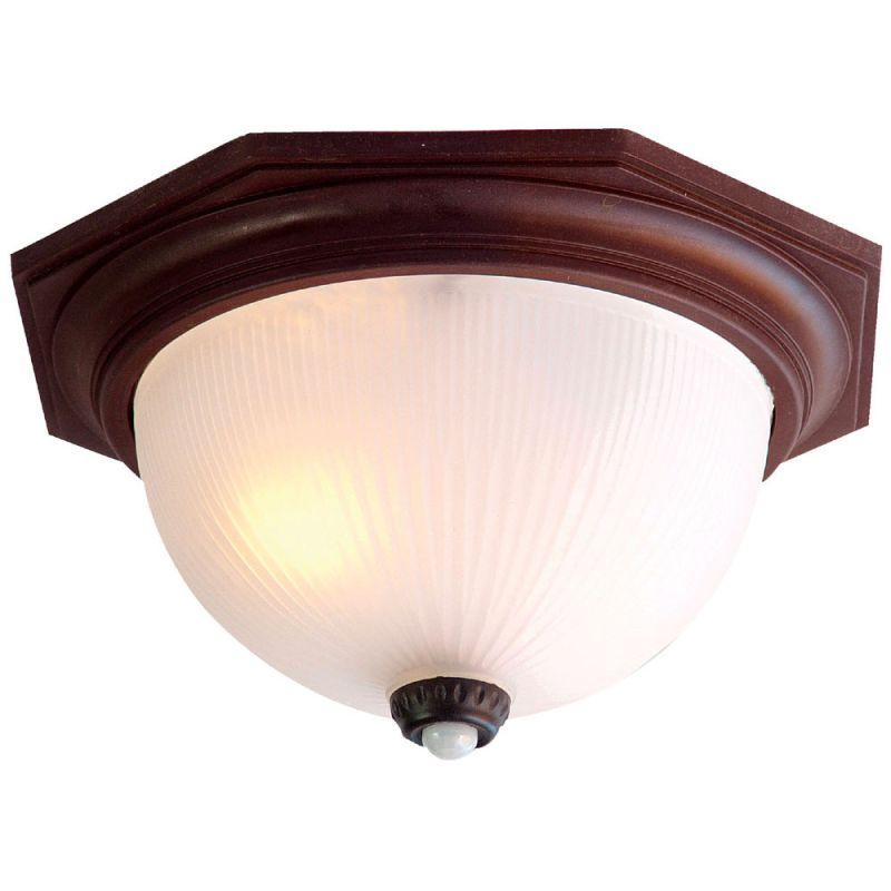 Outdoor Motion Activated Ceiling Light: Acclaim Lighting 75ABZM Architectural Bronze Outer Banks 2