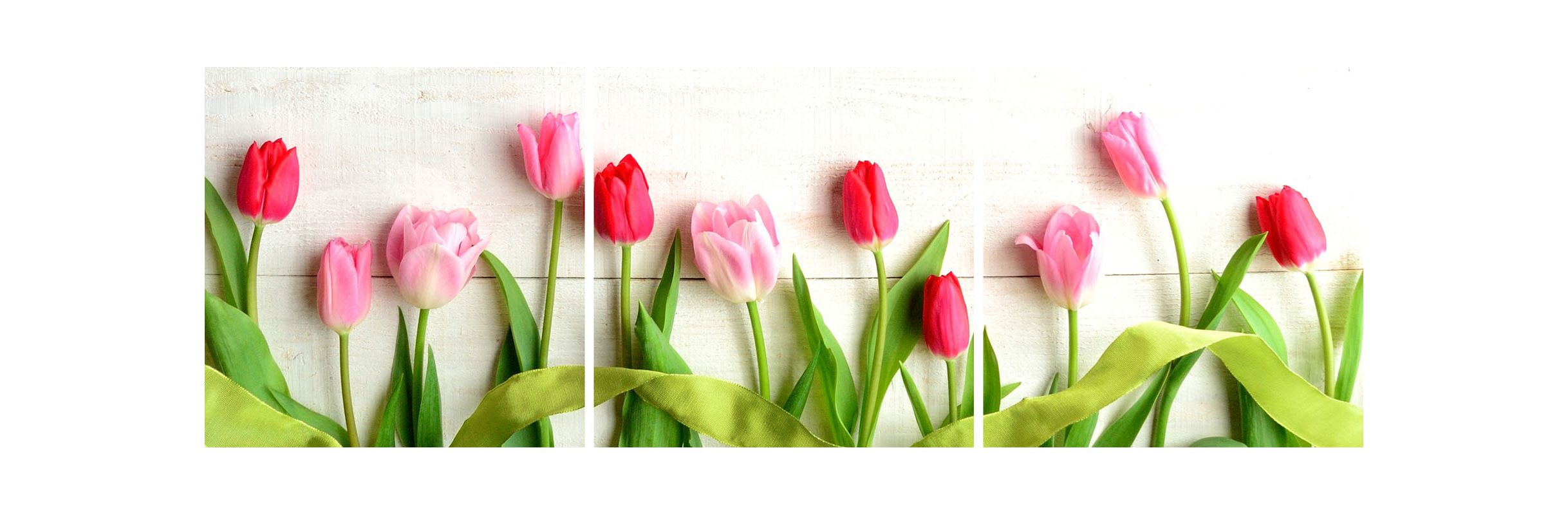 Brewster CR-46009 Tulips Panoramic Wall Decals Tulips Home Decor Wall