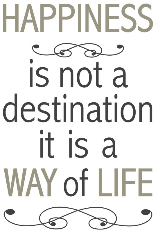 Brewster CR-62229 Happiness Is Not A Destination Wall Quote Home