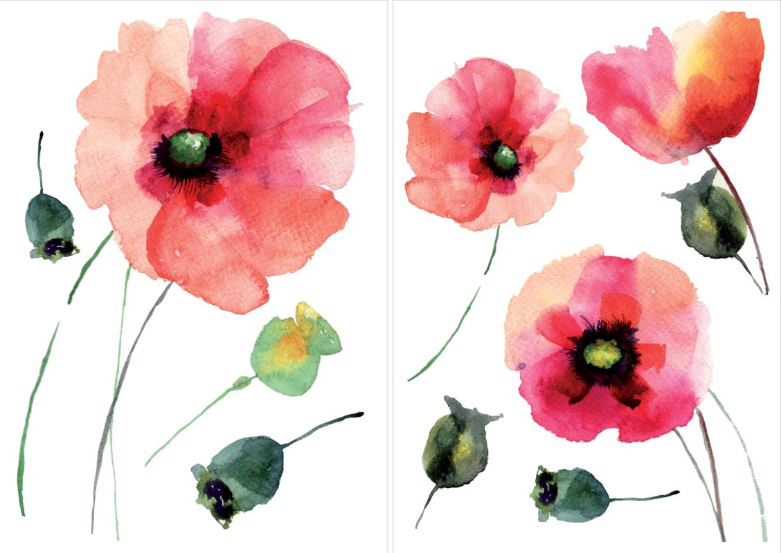 Brewster CR-81003 Watercolor Poppies Wall Decal Home Decor Wall