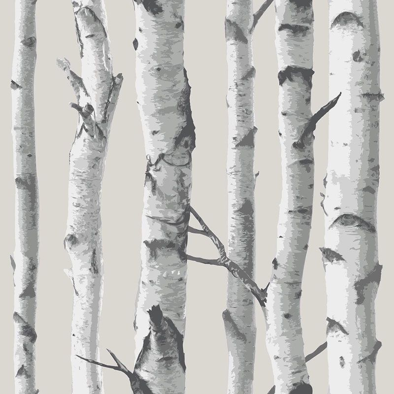 Brewster Birch Tree Peel and Stick Wallpaper Birch Tree Wall Pops
