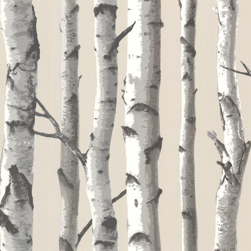 Brewster TLL21499 Tuxbury Beige Birch Tree Wallpaper Beige Birch Tree