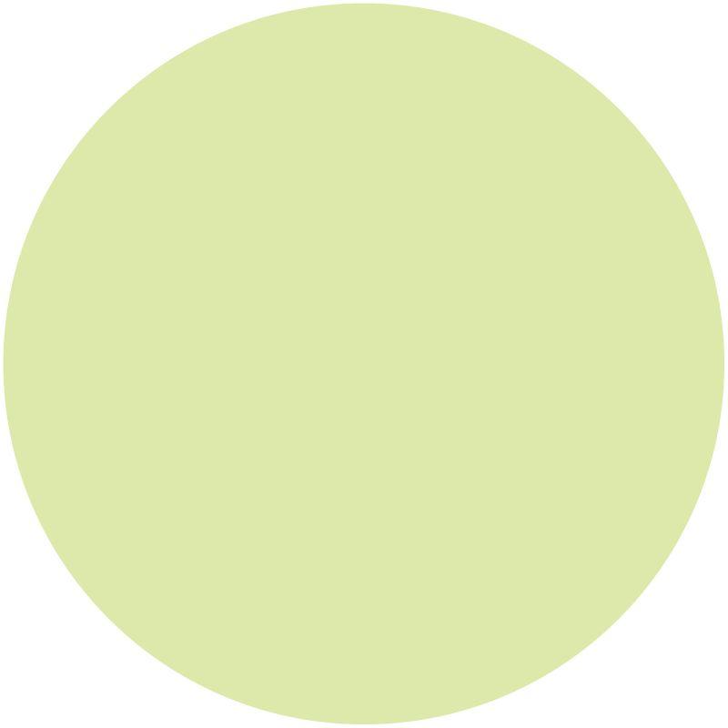 Brewster WP96619 Peapod Dots-Concentric Dots Set Green Home Decor Wall