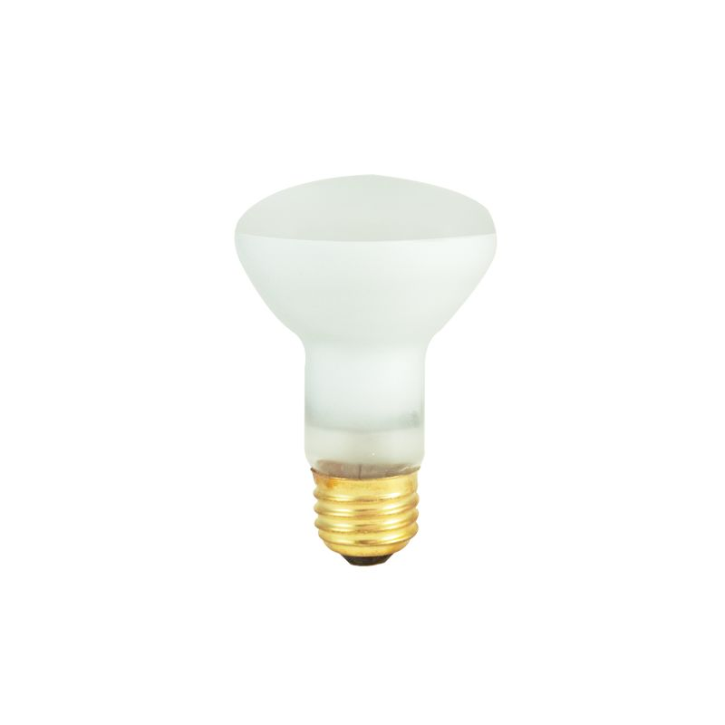 Bulbrite 292004 Pack of (10) 45 Watt Clear Dimmable R20 Shaped Medium