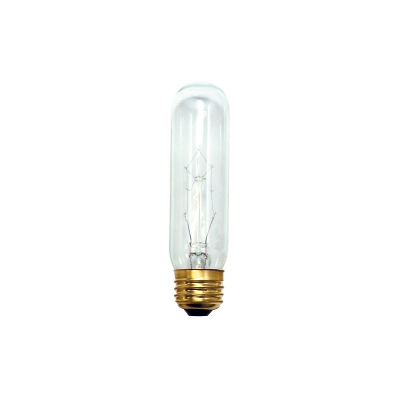 Bulbrite 704125 Pack of (10) 25 Watt Clear Dimmable T10 Shaped Medium