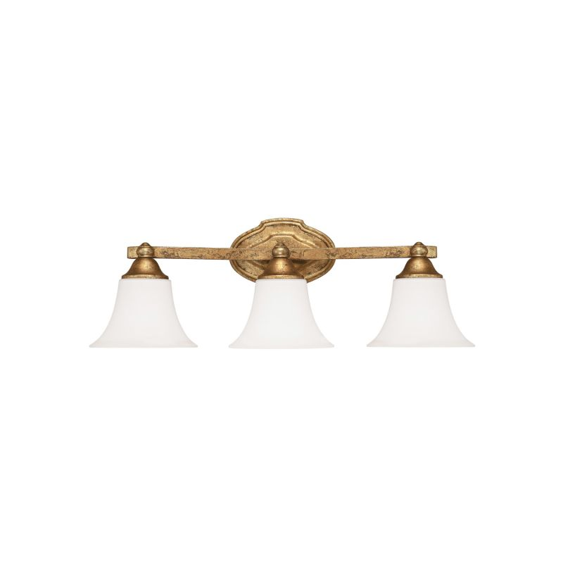 "Capital Lighting 8523-114 Blakely 3 Light 24"" Wide Bathroom Vanity"