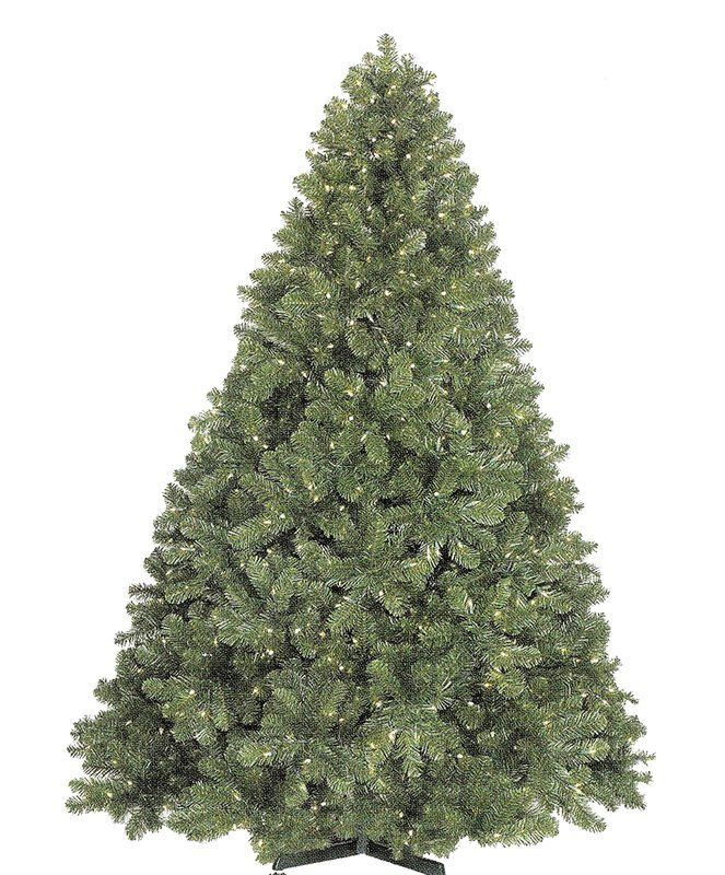 Christmas at Winterland WL-TRSQ-14 14 Foot Classic Sequoia Christmas