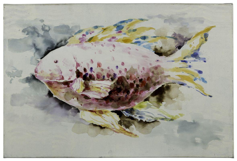 """Cooper Classics 40866 Red Fish 36"""" X 24"""" Canvas Art Greys / Neutrals"""