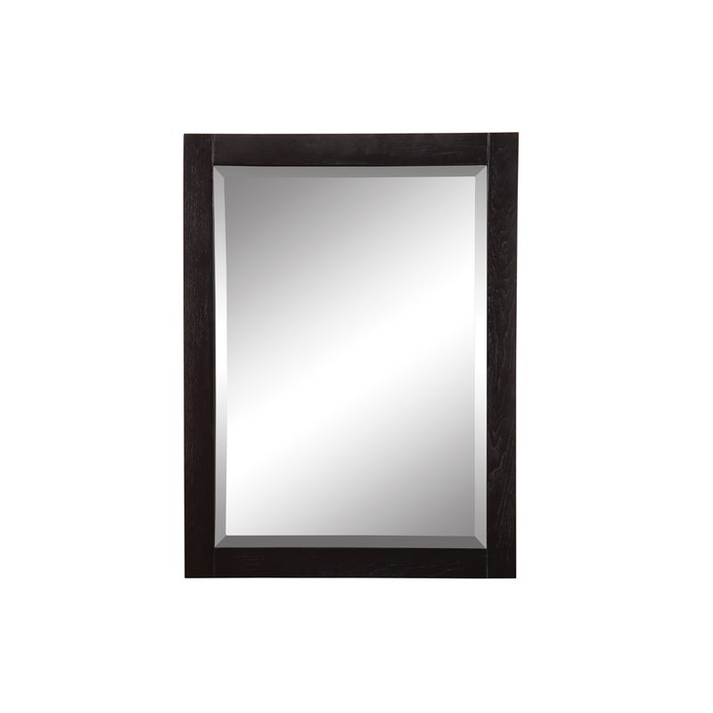 """DecoLav 9719 Briana 24"""" Rectangular Wall Mirror with Stainless Steel"""
