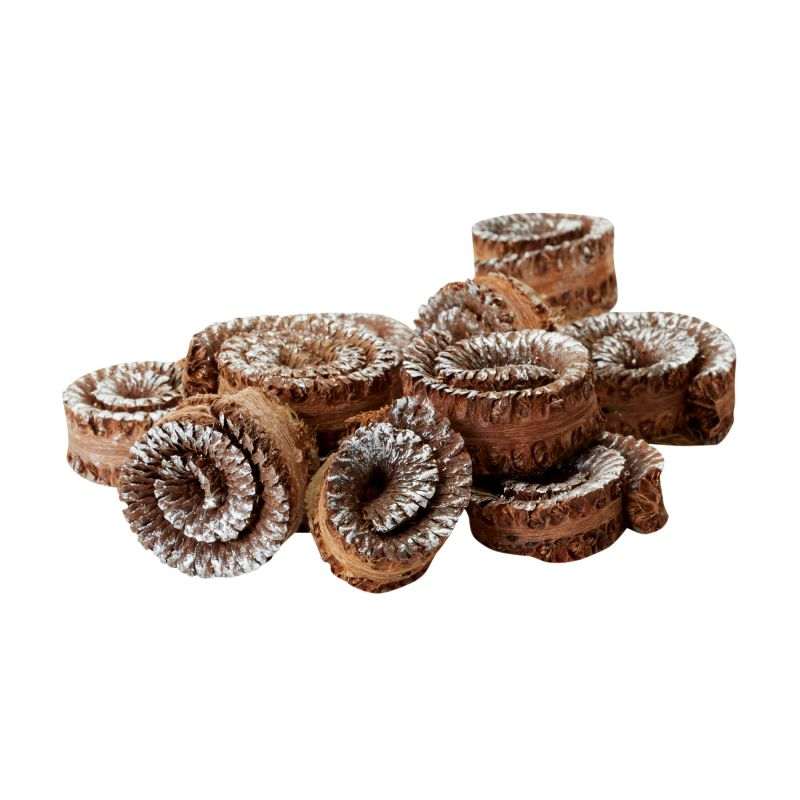 Dimond Home 742004 Brushed Silver Gilt Palm Rule Spirals - Set Of 48