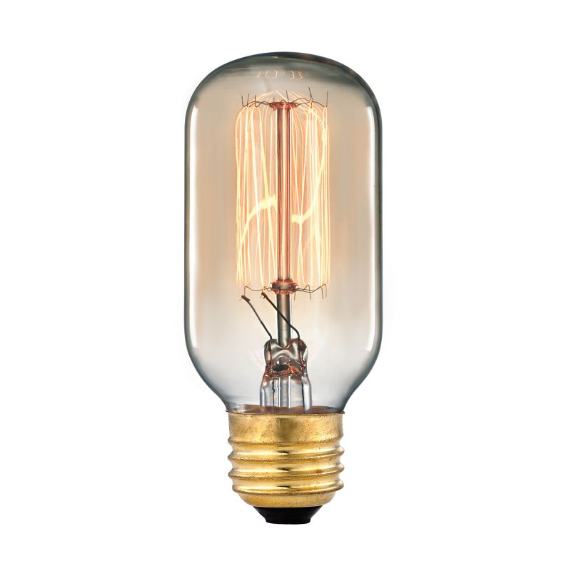Elk Lighting 1102 60 Watt Vintage Filament T8 Incandescent Medium Base