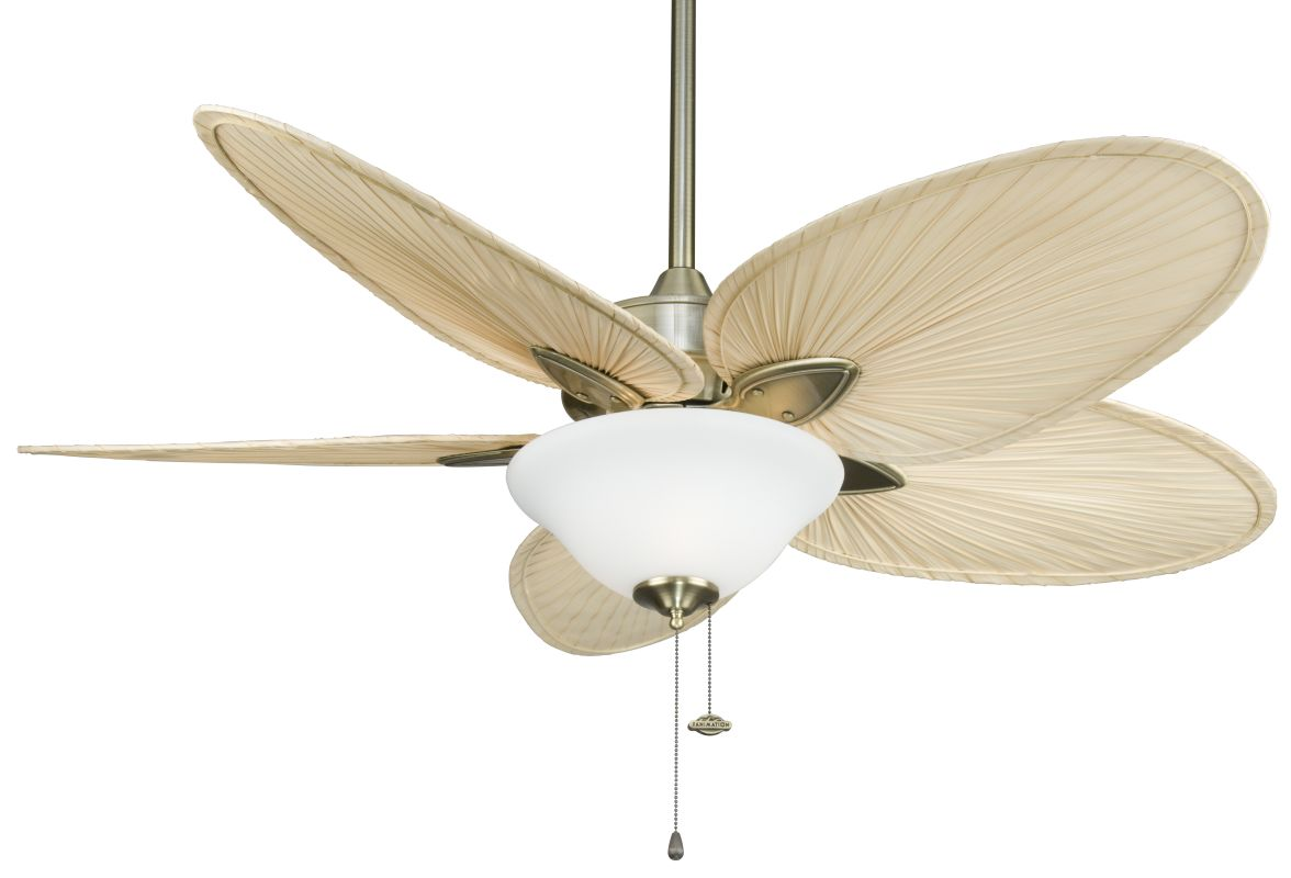 "Fanimation FP7500-F423AB-G456 Windpointe 52"" 5 Blade Ceiling Fan -"