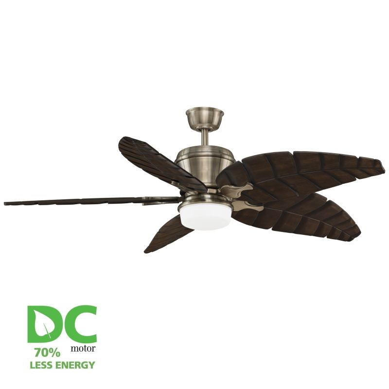 """Ceiling Fans With Up And Down Lights: Fanimation Antique Brass Sandella 60"""" 5 Blade DC Ceiling"""