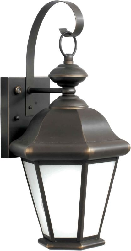 Forte Lighting 10006-01 Energy Efficient Traditional / Classic Outdoor
