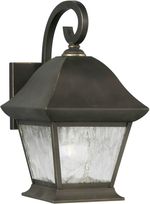 Forte Lighting 1046-01 Exterior Wall Sconce in Cognac with Clear Sale $174.00 ITEM: bci244112 ID#:1046-01-14 UPC: 93185001504 :