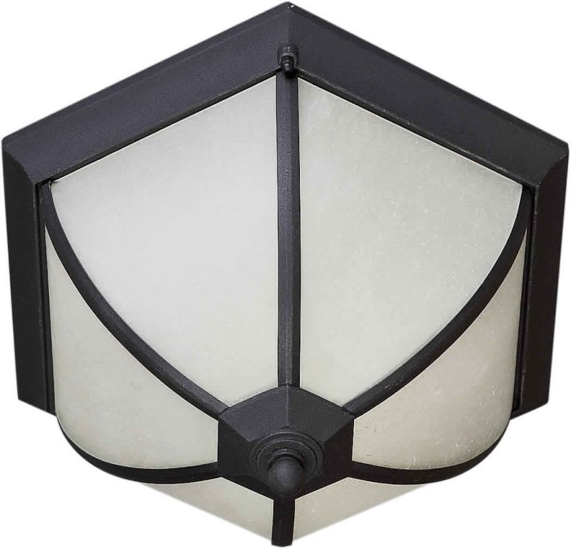Forte Lighting 17007-02 Energy Efficient Transitional Outdoor Ceiling