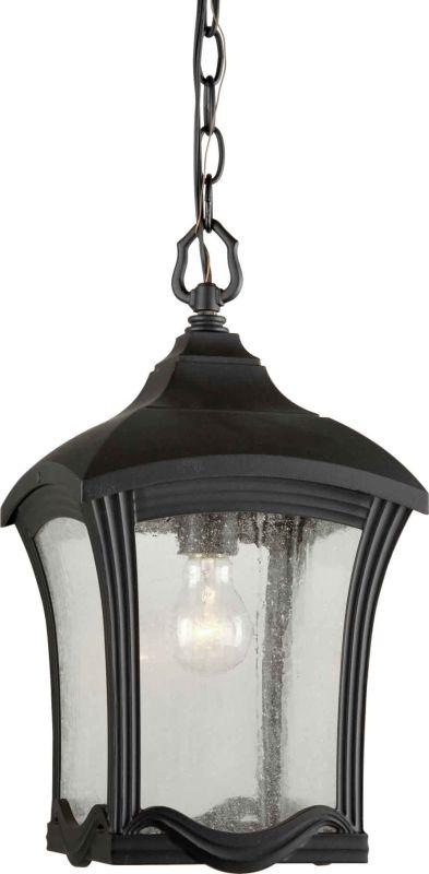 Forte Lighting 1816-01 9Wx16.5H Pendant Light Black Outdoor Lighting Sale $187.00 ITEM: bci1232297 ID#:1816-01-04 :