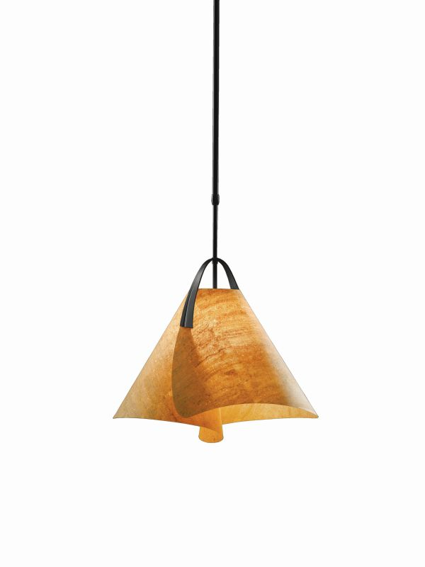 Hubbardton Forge 134501-10 Black Contemporary Mobius Pendant