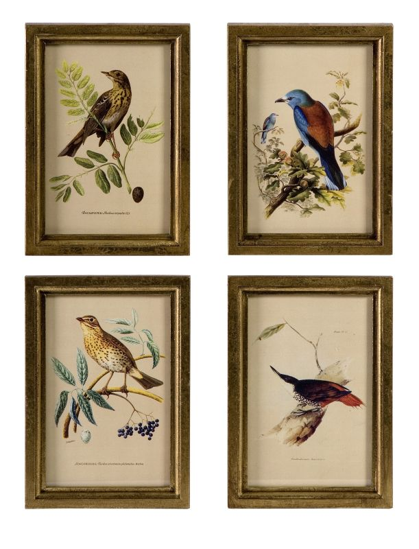 """IMAX Home 16125-4 9"""" x 6.5"""" Wooden Bird Plaques - Set of 4 Home"""