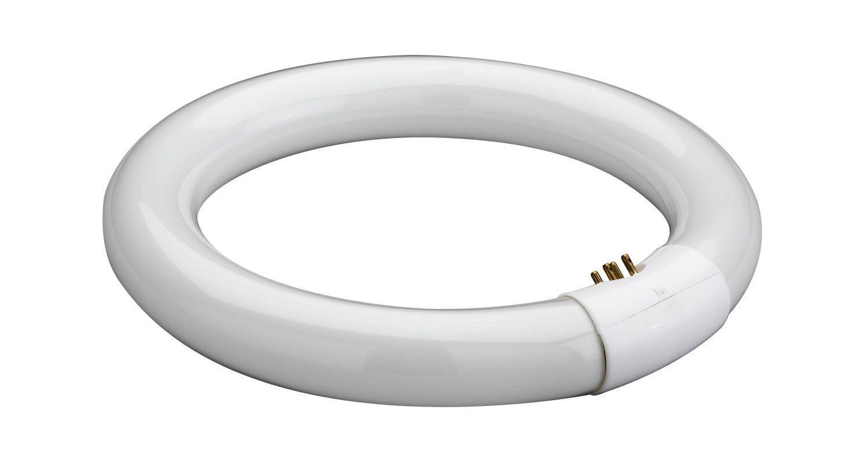 Lithonia Lighting FC2235 22W T9 Circline 3500K Fluorescent Bulb N/A