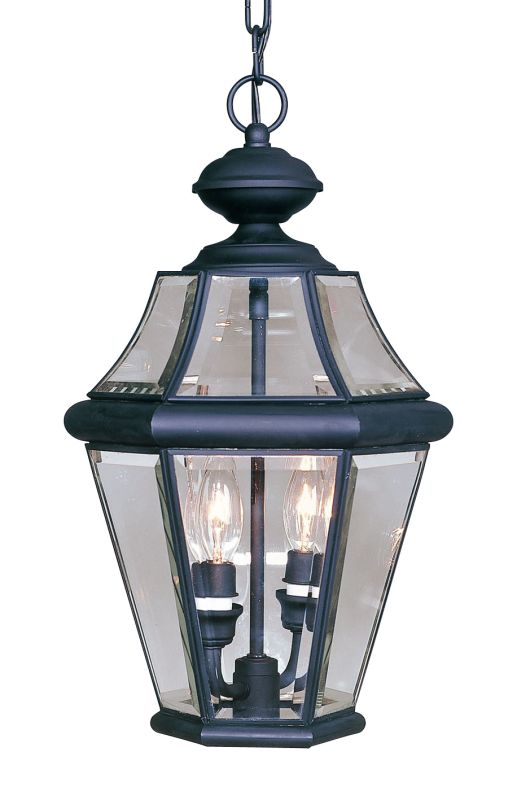 Livex Lighting 2265 Georgetown 2 Light Outdoor Pendant Black Outdoor