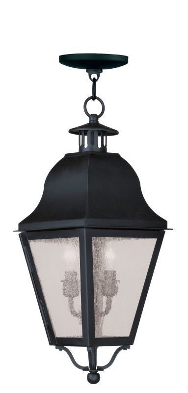 Livex Lighting 2546 Amwell Outdoor Pendant with 2 Lights Black Outdoor