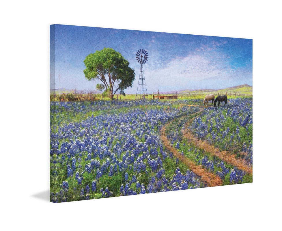 Marmont Hill Windmill Landscape Chris Vest Painting Print on Canvas 24