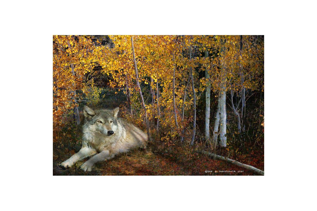 Marmont Hill Wolf Repose Aspen Chris Vest Painting Print on Canvas 20 Sale $147.31 ITEM: bci2816825 ID#:ET-MWW-CV-9927-C-30 UPC: 763250505106 :