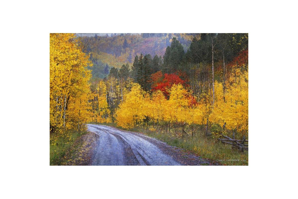 Marmont Hill Wet Road Peak of Autumn Chris Vest Painting Print on