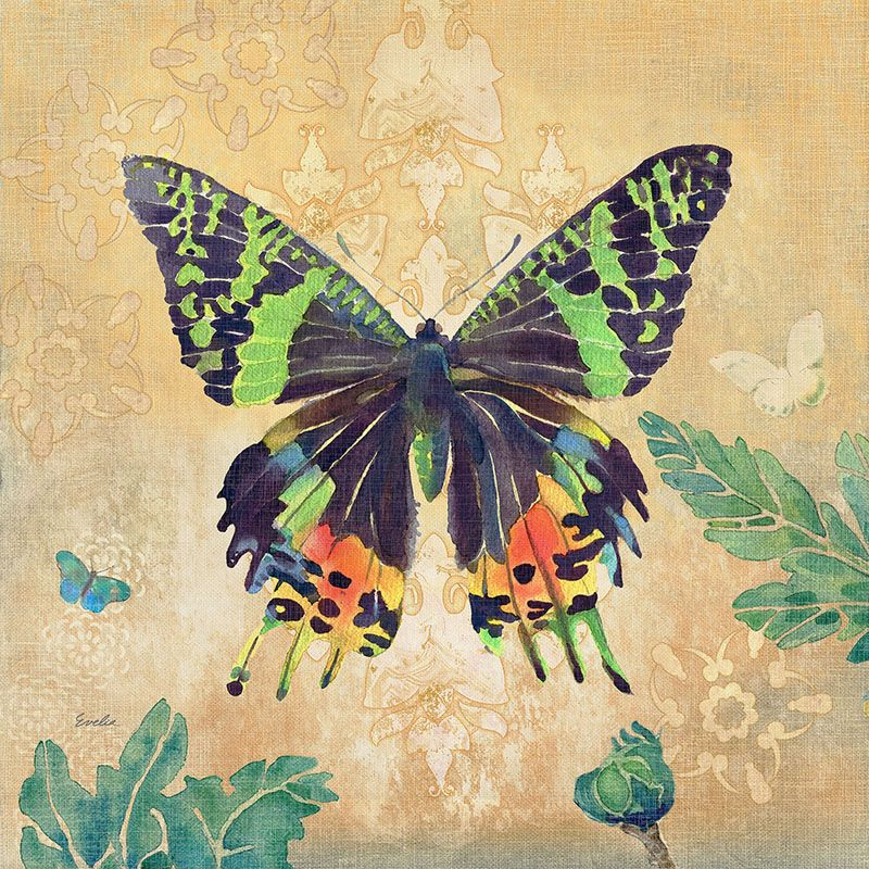 Marmont Hill Madagascar Sunset Butterfly Evelia Painting Print on