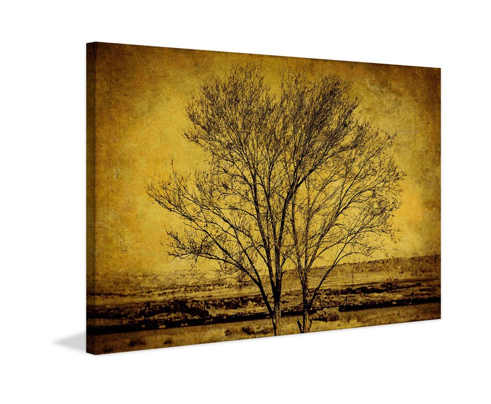 Marmont Hill Entwined Tree Print on Canvas 16 x 24 Home Decor Canvas