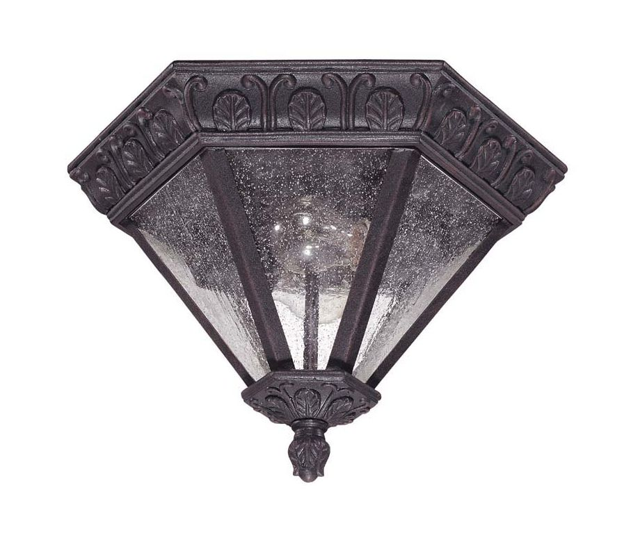 Nuvo Lighting 60/2037 Cortland 2 Light Flush Mount Outdoor Ceiling Sale $79.99 ITEM: bci910551 ID#:60/2037 UPC: 45923620379 :