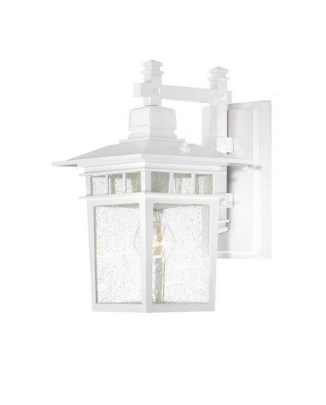 Nuvo Lighting 60/4957 Cove Neck 1 Light Outdoor Lantern Wall Sconce in