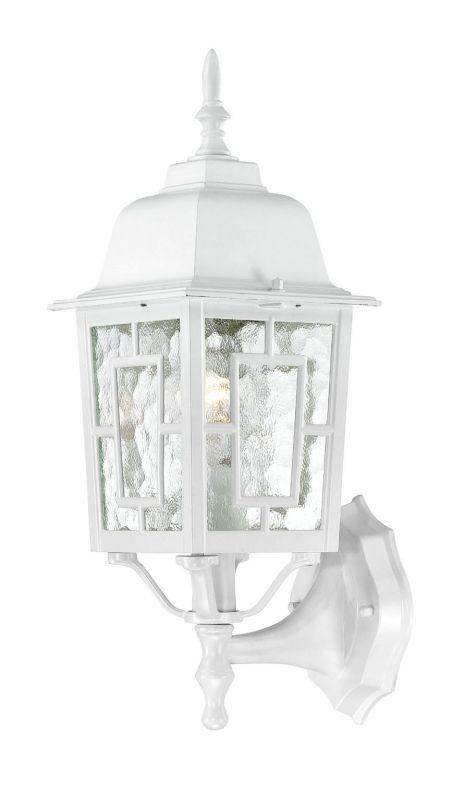 Nuvo Lighting 60/4924 Banyon Single-Light Wall Lantern with Clear