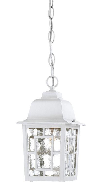 Nuvo Lighting 60/4931 Banyon Single-Light Hanging Lantern with Clear