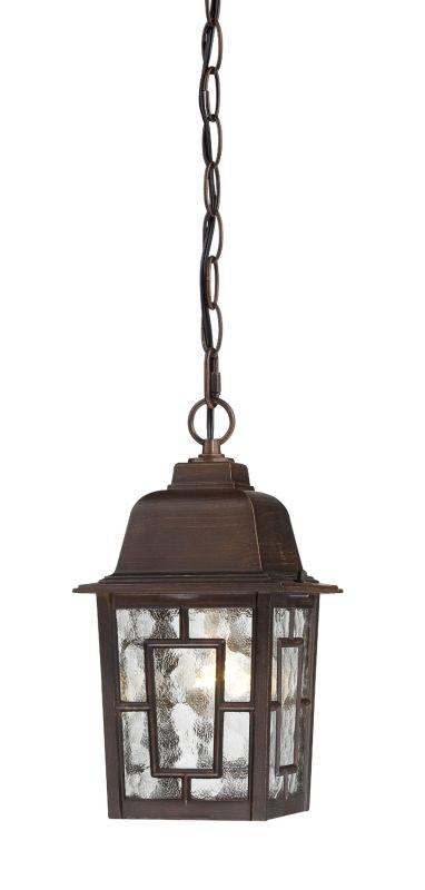 Nuvo Lighting 60/4932 Banyon Single-Light Hanging Lantern with Clear