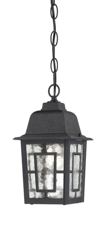 Nuvo Lighting 60/4933 Banyon Single-Light Hanging Lantern with Clear