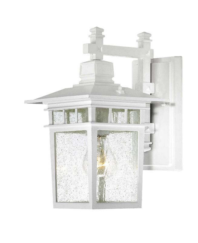 Nuvo Lighting 60/4951 Cove Neck Single-Light Wall Lantern with Clear