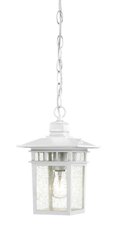 Nuvo Lighting 60/4954 Cove Neck Single-Light Hanging Lantern with