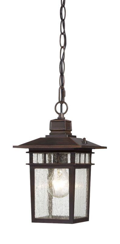 Nuvo Lighting 60/4955 Cove Neck Single-Light Hanging Lantern with