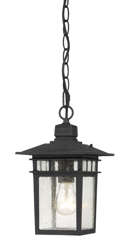 Nuvo Lighting 60/4956 Cove Neck Single-Light Hanging Lantern with